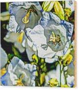 White Flower Spendor Wood Print