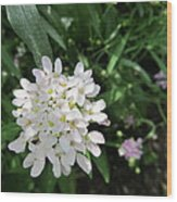 White Flowerettes Wood Print