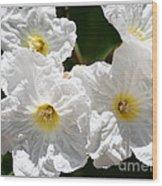 White Flowers In The Desert Wood Print
