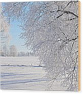 White Frost Wood Print by Conny Sjostrom