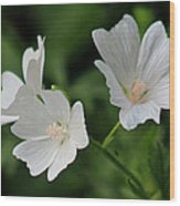 White Garden Flowers Wood Print