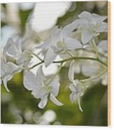 White Gems Wood Print