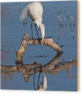 White Heron In The Looking Glass Wood Print