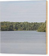 White Heron Lake Poconos Pa IIi Wood Print by John Telfer