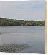 White Heron Lake Poconos Pa Wood Print by John Telfer