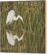 White Heron Staring At The Water Wood Print