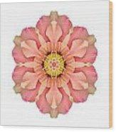 Hibiscus Rosa-sinensis I Flower Mandala White Wood Print