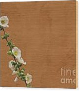 White Hollyhock Against Orange Wall Wood Print