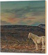 White Horse At Sunset Wood Print