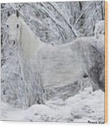 White Horse In The Snow Wood Print