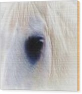 White Horse Look Wood Print