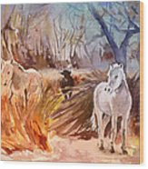 White Horses And Bull In The Camargue Wood Print