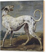 White Hound Wood Print