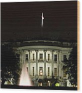 White House And Fountain Wood Print
