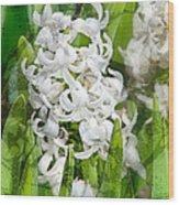 White Hyacinth Flowers Digital Art Wood Print