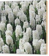 White Hyacinths Wood Print