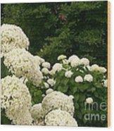 White Hydrangeas Wood Print