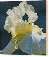 White Iris With Yellow Wood Print