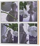 White Lace Picture Window Wood Print