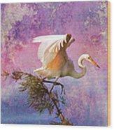 White Lake Swamp Egret Wood Print by J Larry Walker