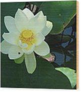 White Lotus I Wood Print