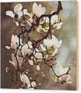 White Magnolias Wood Print