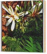 White Maui Flowers Wood Print