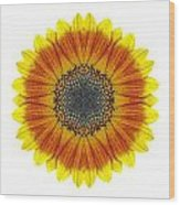 Orange And Yellow Sunflower I Flower Mandala White Wood Print