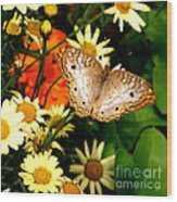 White Peacock Butterfly I V Wood Print