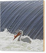 White Pelican Over The Dam Wood Print