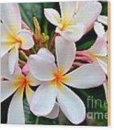 White Plumeria - 2 Wood Print