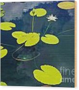 White Pond Lily Wood Print
