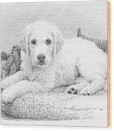White Puppy Pencil Portrait Wood Print