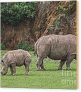 White Rhino 11 Wood Print