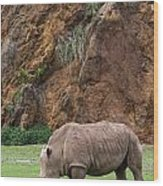 White Rhino 13 Wood Print