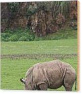 White Rhino 14 Wood Print