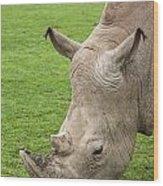 White Rhino 15 Wood Print