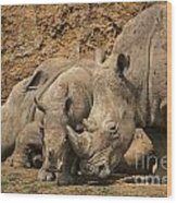 White Rhino 3 Wood Print