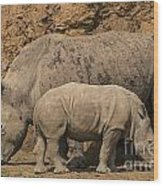 White Rhino 4 Wood Print