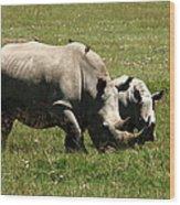 White Rhinoceros Wood Print