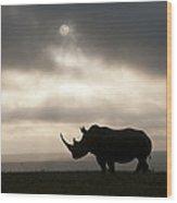 White Rhinoceros At Sunset Kenya Wood Print