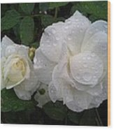 White Rose And Raindrops Wood Print