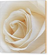 White Rose Heart Wood Print