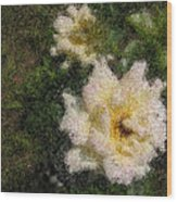 White Rose N My Backyard Wood Print