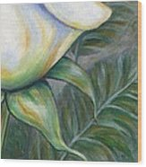 White Rose One Panel Four Of Four Wood Print
