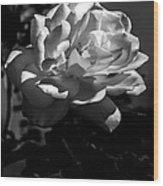 White Rose Wood Print by Robert Bales