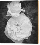 White Rose You Are Heavenly Wood Print