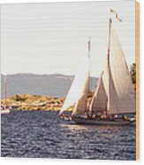 White Sails In The Sunset Wood Print