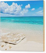 White Sand Wood Print by Chad Dutson