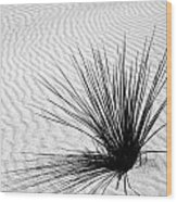 White Sands 07 Wood Print